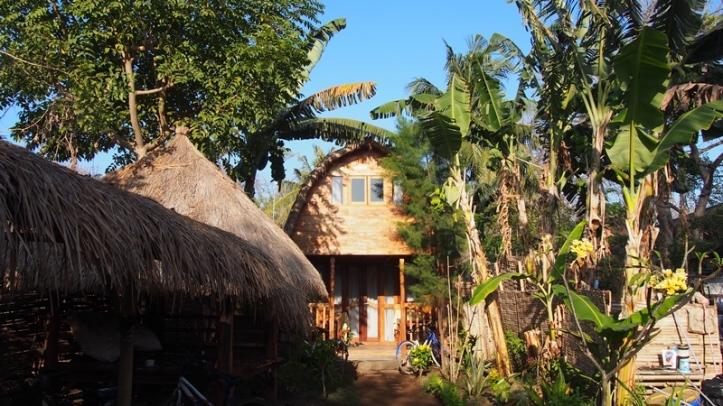 Cotton Tree Cottages