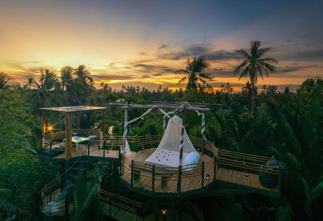foto: Bangkok Tree House