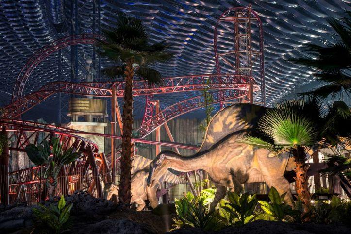 IMG Dino Zone